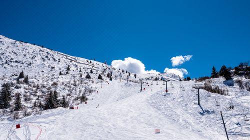 武汉周边游 英山南武当激情滑雪一日游 武汉九洲国旅027-82779128